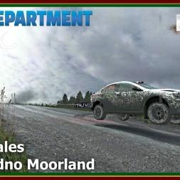 Dirt Rally - RDRC 08 - Rally Wales - SS13 Bidno Moorland