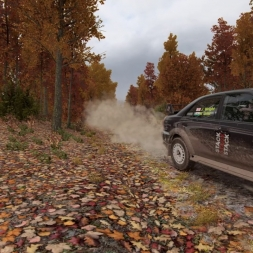 DiRT 4 - A Smooth Run!