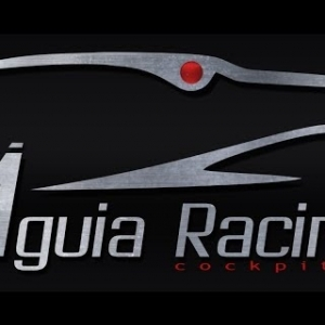 RACEROOMERS ÁGUIA RACING GTR3 SERIES Round 2 BATHURST