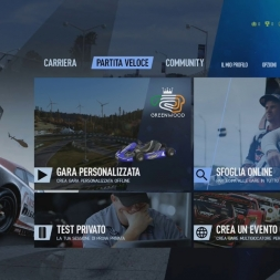 project CARS 2 Thrustmaster Force feedback setting - T300 alcantara edition