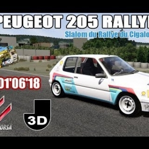 Peugeot 205 Rallye  - Slalom Rallye du Cigalois Kartix