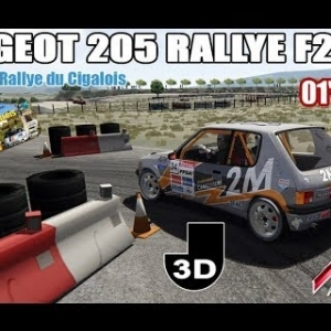 Peugeot 205 Rallye F2000 - Slalom Rallye du Cigalois Kartix