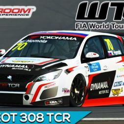 Raceroom - Peugeot 308 WTCR 2018 (PT-BR)