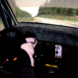 32:9 Super Ultra Wide Monitor - DiRT Rally