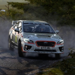 DiRT 4 | AVR S10 | Rally Wales SS1