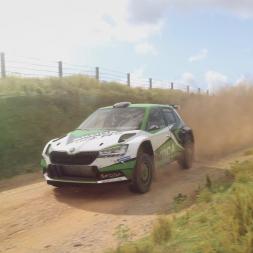 DiRT Rally 2.0 | Škoda Fabia R5 | New Zealand SS Waimarama Sprint Reverse 4:47.431