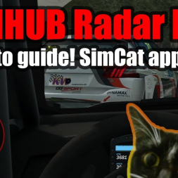 SIMHUB Radar HUD: How to guide! Have fewer collisions!
