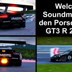 ACFAN oder Fonsecker für den Porsche 911 GT3 R 2016 - Assetto Corsa - Let's Play