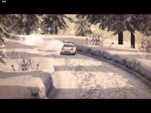 WRC 4: FIA World Rally Championship [Volkswagen Polo R WRC (Sweden)]