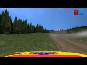 Seat spin at hairpin in RBR