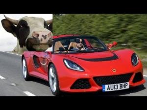Corro contro le Mucche! - Exige Roadster a Salzbrurgring - Talk&Drive
