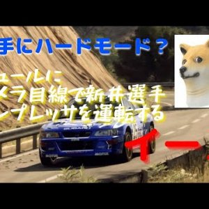 A dog looking at the camera driving Toshi Arai's Impreza in surrealism